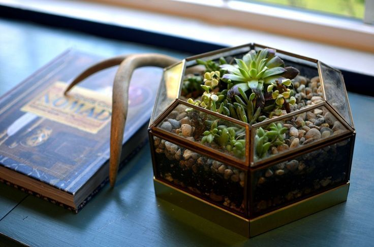 Chic Geometric Terrarium Decoration Ideas